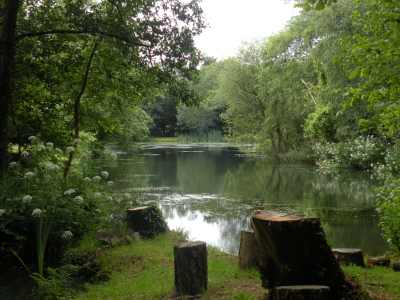 Fishing Lake at Blakewell Trout Farm
